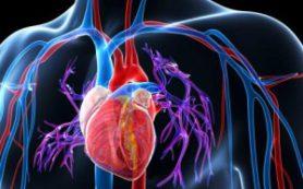 У детей кардиохирургические операции могут быть связаны с отдаленным риском развития артериальной гипертензии