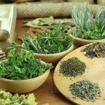 Укрепляем иммунитет с помощью трав