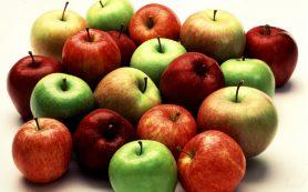 Яблоки защищают от сердечно-сосудистых заболеваний не хуже статинов