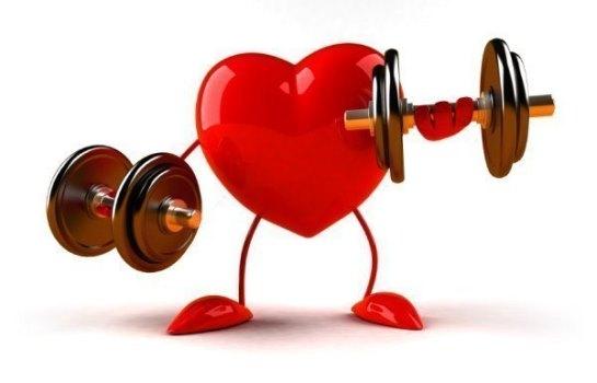 Сердце не камень: поддается тренировке