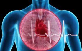 Физкультура лечит болезни сердца и сосудов не хуже лекарств