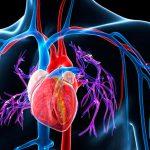 Волонтерство снижает риск гипертонии у пожилых людей