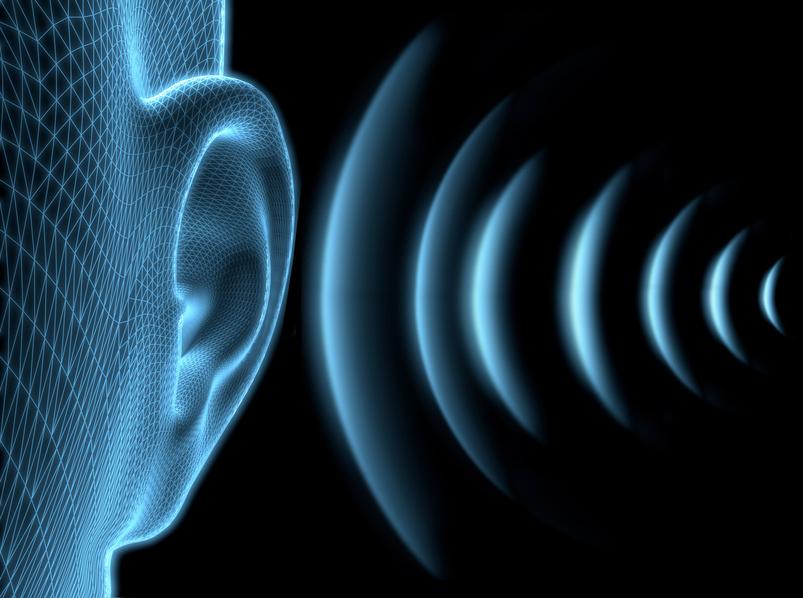 Шум разрушает здоровье сердца