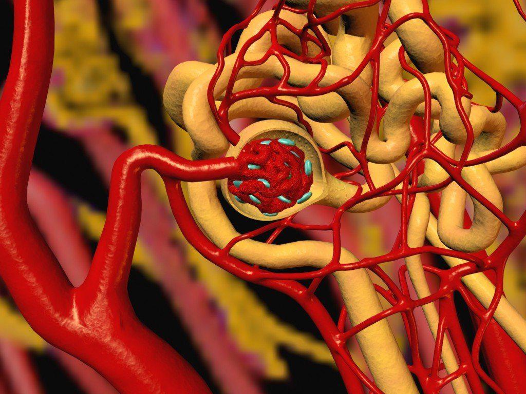 Маскированная артериальная гипертензия – проблема, недооцененная современной медициной