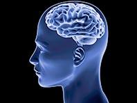 Исследователи нашли причину нарушения пространственной ориентации при деменции