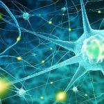 Вероятная причина нейродегенеративных заболеваний кроется... в нашем мозге