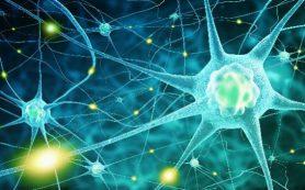 Вероятная причина нейродегенеративных заболеваний кроется… в нашем мозге