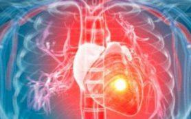 Эффективность клеточной терапии инфаркта зависит от иммунной реакции