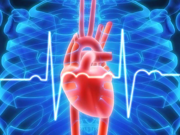 Сердечную недостаточность будут лечить омоложением сердца
