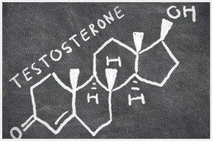 Как общий и свободный тестостерон в организме влияет на риск развития мастопатии?