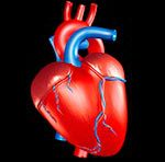 Новый метод поможет определить риск образования тромбов в сердце
