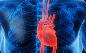 Передаются ли по наследству заболевания сердечно-сосудистой системы?