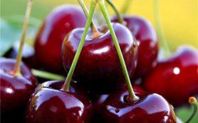 Черешня снижает риск возникновения сердечно-сосудистых заболеваний
