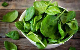 Специалисты вырастили ткань сердца на листьях шпината
