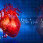 Избыток витамина Е приводит к проблемам сердечно-сосудистой системы