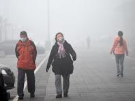 Загрязнение воздуха снижает уровень «хорошего» холестерина в организме
