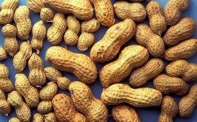 Кардиологи узнали, как контролировать холестерин без таблеток
