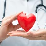 Исследователи обнаружили белок, который повышает риск возникновения заболеваний сердца