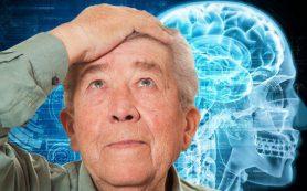 Наш мозг стареет уже после 25 лет