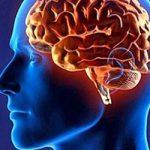 Инсульт: как повышенное кровяное давление может погубить мозг