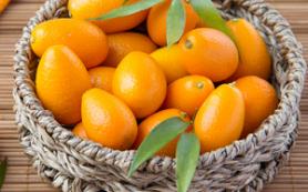 Цитрусовые помогают предотвратить ожирение и инсульт