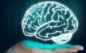 Выявлена мутация ДНК, которая привела к росту мозга человека