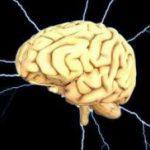 Ночные кошмары - предвестники болезни мозга
