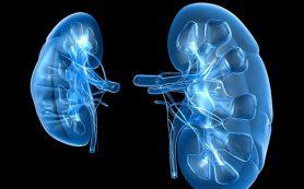 Острое поражение почек может возникнуть из-за бесконтрольного приема антибиотиков и обезболивающих лекарств