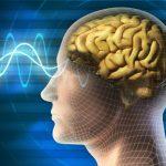 Ученые нашли верный путь к умственным сверхспособностям