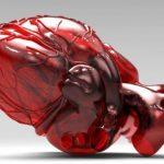 Даже небольшой порок сердца влияет на школьную успеваемость