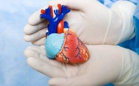 Предложен новый метод лечения «правых»Предложен новый метод лечения «правых» патологий сердца