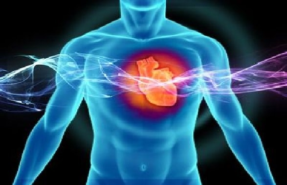 Создана система биоидентификации по биению сердца