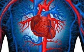 Люди, перенесшие инсульт, подвергаются риску сердечного приступа