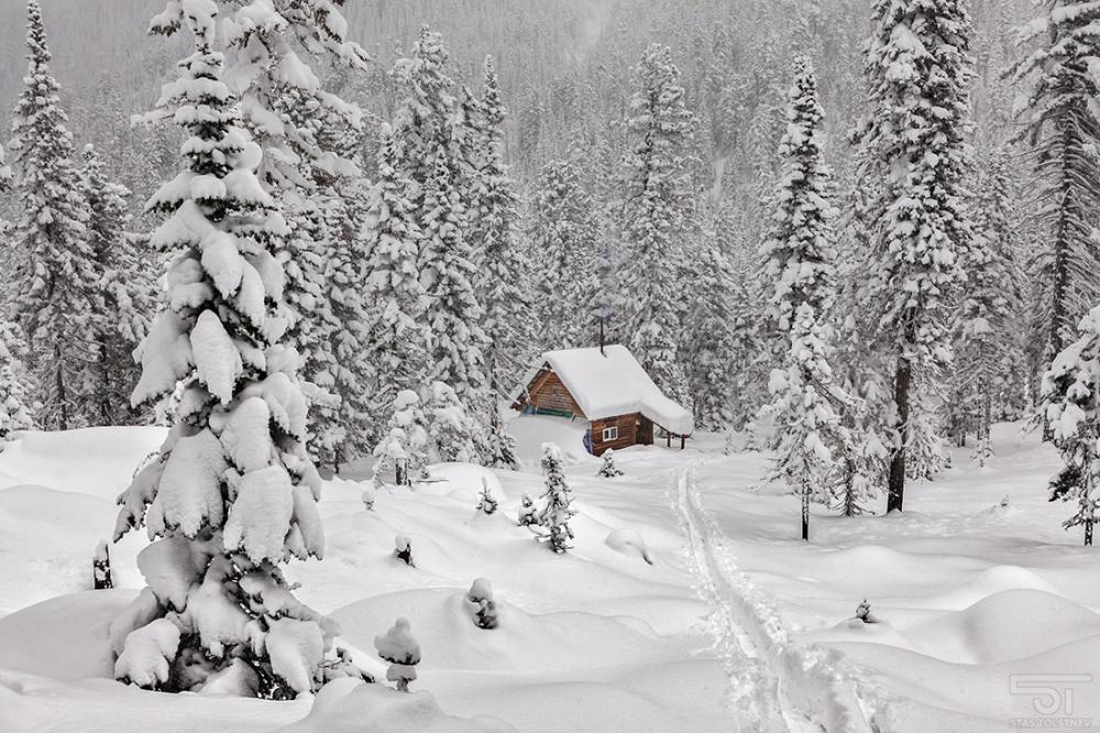 Болезни сердца обостряются зимой