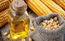 Кукурузное и сафлоровое масла вредят сосудам и сердцу