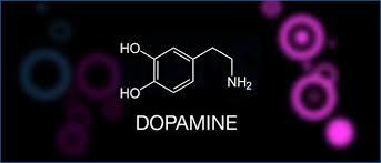 Дофамин и добутамин в лечение кардиогенного шока