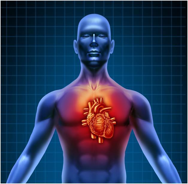 Причины хронической сердечной недостаточности