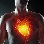 Аномалии расположения сердца
