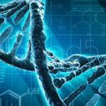 Генетики: человечество теряет здоровье и глупеет