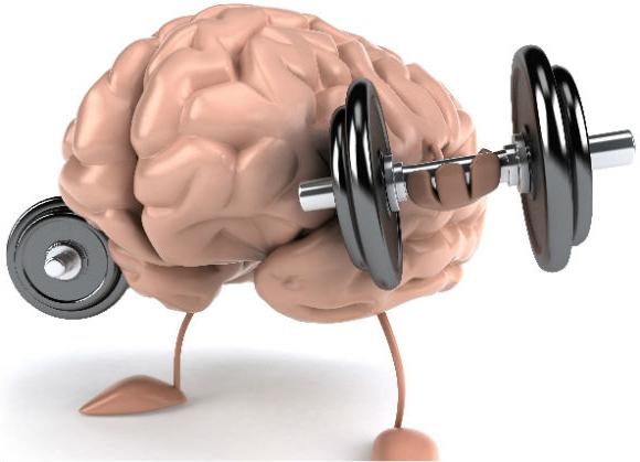 Эффективные препараты для улучшения мозгового кровообращения и памяти помогут повысить продуктивность труда
