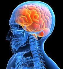 Уникальные методики очищения сосудов головного мозга