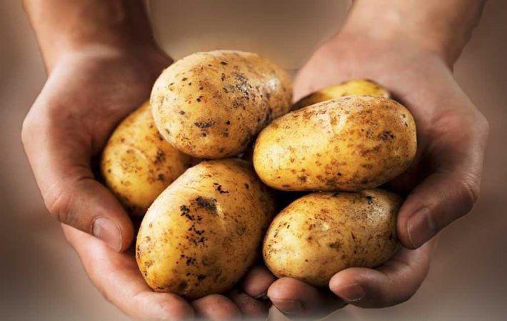 Ученые: Картофель помогает худеть и укреплять сердце