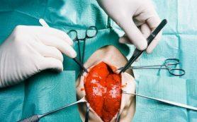 Продукты, рекомендуемые для похудения могут стать причиной болезни сердца