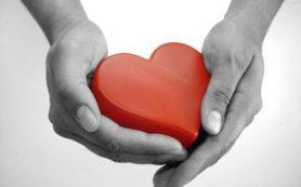 Эти народные средства действенно укрепляют сердце
