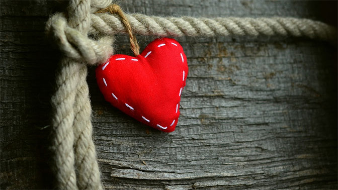 В Японии разрешили лечить сердце с помощью стволовых клеток