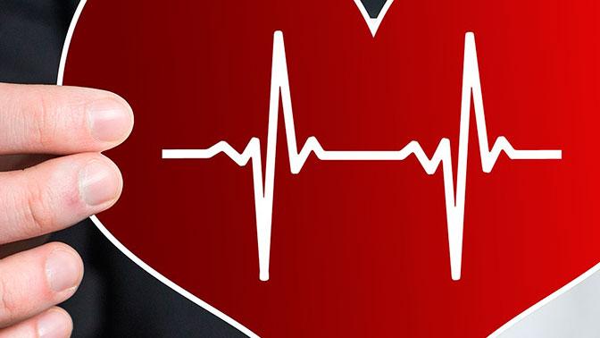 Российские ученые первыми в мире восстановили замороженное сердце
