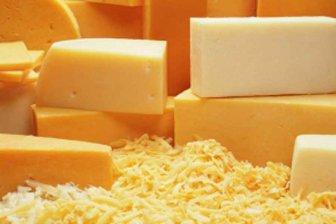 Ученые назвали 5 фактов, которых вы не знали о сыре