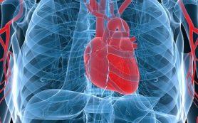 В Японии проведут первую в мире операцию на сердце с помощью плюрипотентных клеток