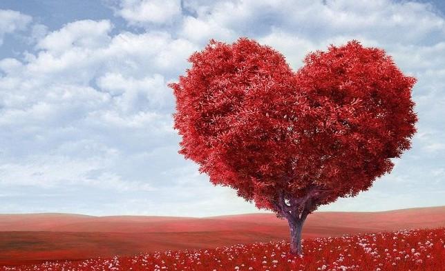 Как омолодить сердце на 15 лет: медики объяснили