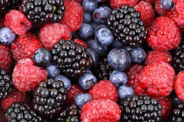 Ученые нашли ягоду, которая «излечит» сердце